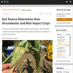 Soil Texture Determines How Groundwater and Rain Impact Crops