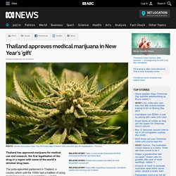 Thailand approves medical marijuana in New Year's 'gift'