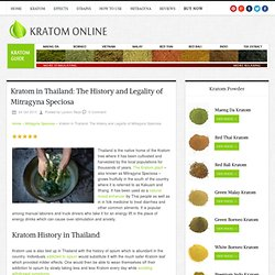 Kratom in Thailand: The History and Legality of Mitragyna Speciosa