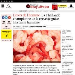 Droits de l'homme. La Thaïlande championne de la crevette grâce à la traite humaine