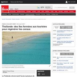 Thaïlande: des îles fermées aux touristes pour régénérer les coraux