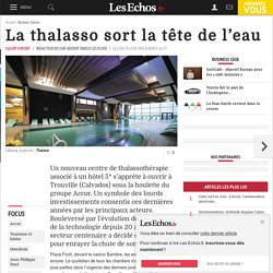 La thalasso sort la tête de l'eau, Business case