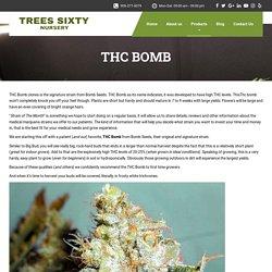 THC BOMB - Trees Sixty Nursery