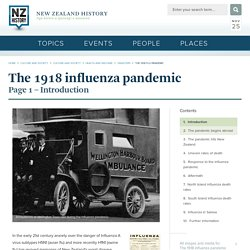 The 1918 flu pandemic - The 1918 influenza pandemic
