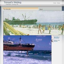 The Amaryllis « Trimoot's Weblog