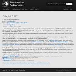 The American Go Foundation