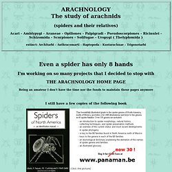 THE ARACHNOLOGY HOME PAGE