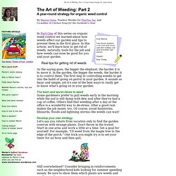 The Art of Weeding: Part 2