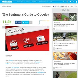The Beginner's Guide to Google+