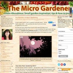 The Benefits of Moon Gardening -