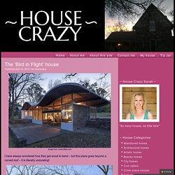 The 'Bird in Flight' house