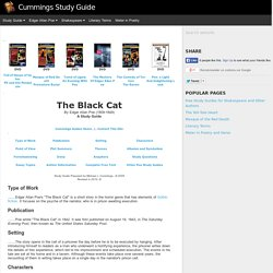 The black cat essay