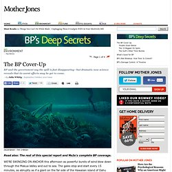 The BP Cover-Up