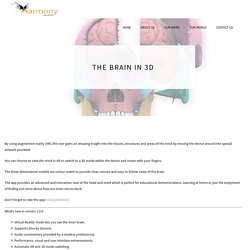 The Brain in 3D – Harmony Studios