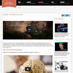 THE BRAIN - PBS series and book