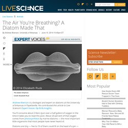 The Air You're Breathing? A Diatom Made That