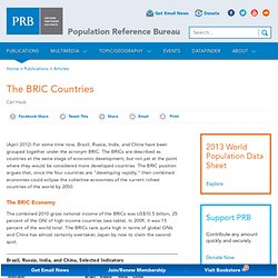 The BRIC Countries