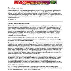 The CaMV promoter story