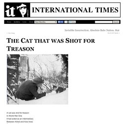 The Cat that was Shot for Treason