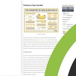 The Chemistry of Eggs & Egg Shells
