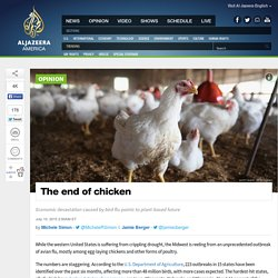 The End of Chicken