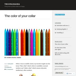 The color of your collar – Truonghaiha