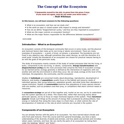 The Concept of the Ecosystem