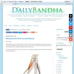The Daily Bandha