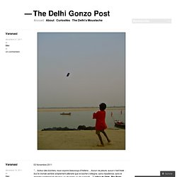 The Delhi Gonzo Post