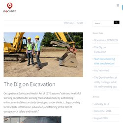 The Dig on Excavation