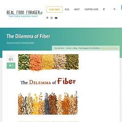 The Dilemma of Fiber