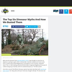 The Top Six Dinosaur Myths And How We Busted Them