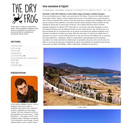 THE DRY FROG