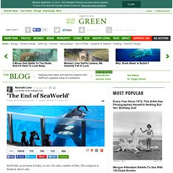 'The End of SeaWorld'
