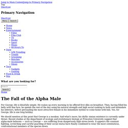 The Fall of the Alpha Male