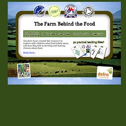 The Farm Behind The Food