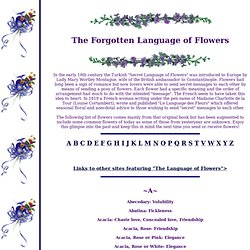 The Forgotten Language of Flowers