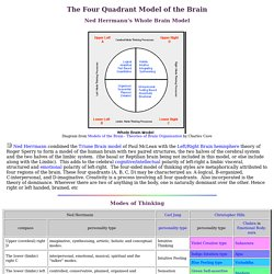 The Four Quadrant Model of the Brain