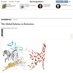 The Global Solution to Extinction