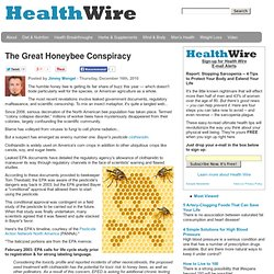 The Great Honeybee Conspiracy
