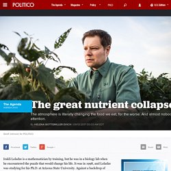The great nutrient collapse
