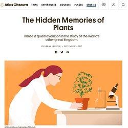 The Hidden Memories of Plants