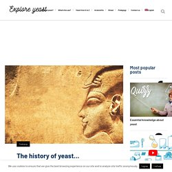 The history of yeast...