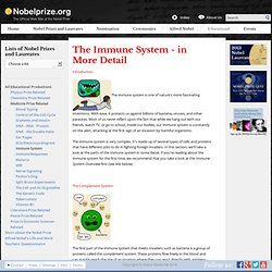 The Immune System - in More Detail