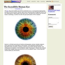 The Incredible Human Eye