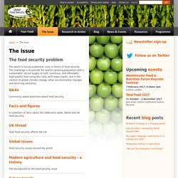 The issue - Global Food Security