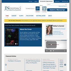 The Journal of Neuroscience Online