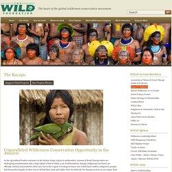 The WILD Foundation - The WILD Foundation