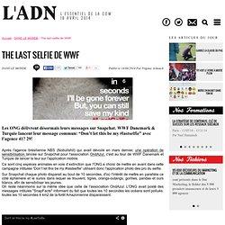 The last selfie de WWF - DANS LE MONDE
