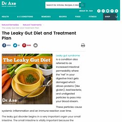 The Leaky Gut Diet and Treatment Plan